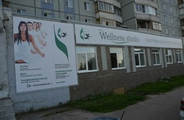 Йога-Студия Wellness Studio